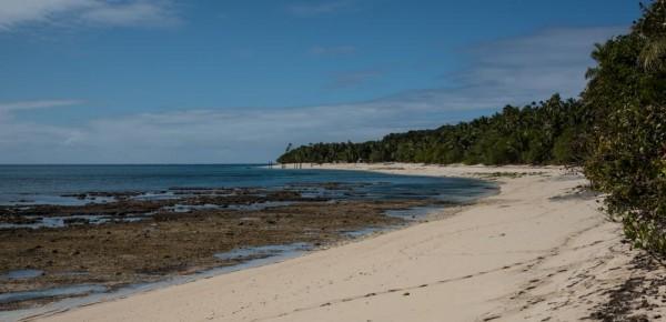 Driven Island beach