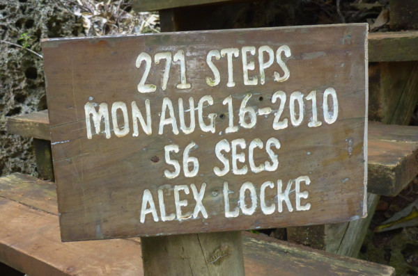 Monty did not take up the challenge as many of the stairs had been crushed by trees that fell during the cyclone.