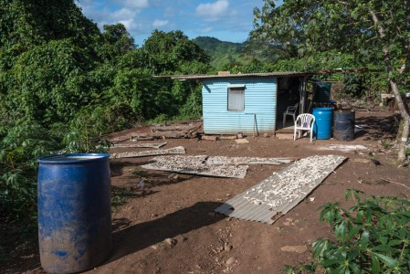 Fijian home with copra drying in the yard