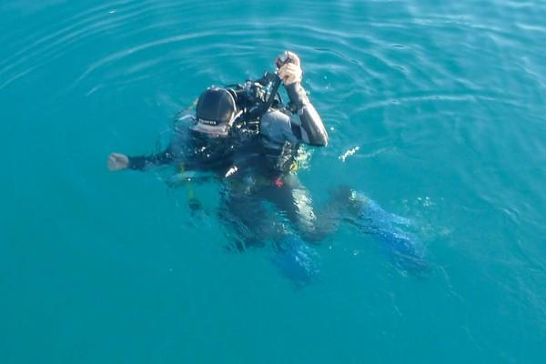 Roland diving our anchor again!
