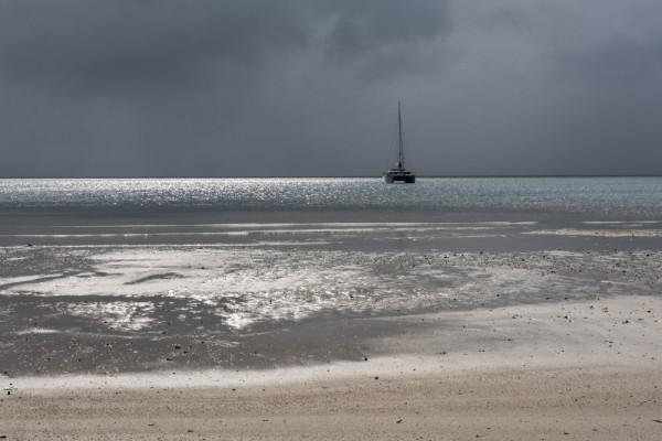 Whistler in Albert Cove